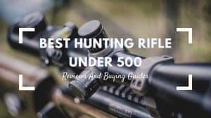 best hunting rifle under 500