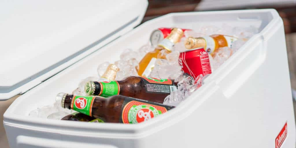 best 20 quart cooler