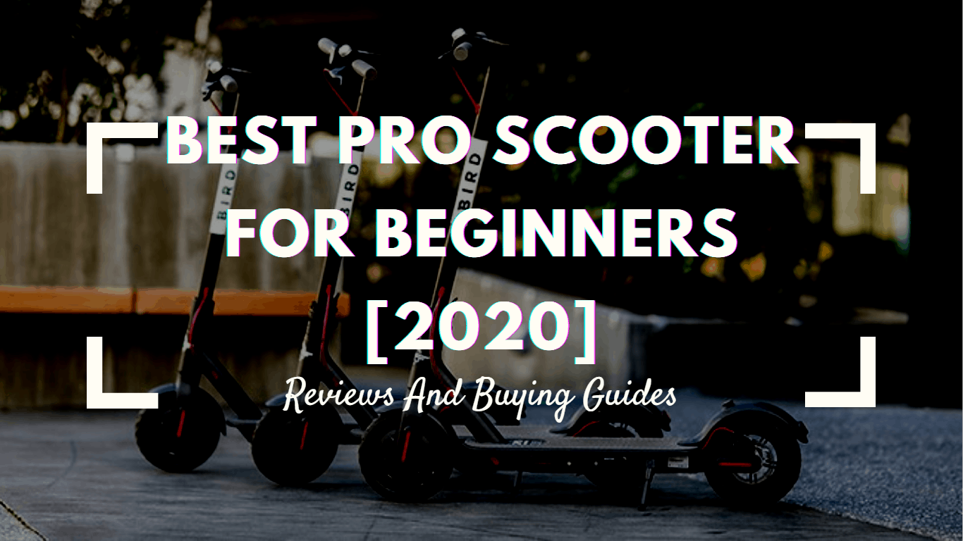 Best Pro Scooter For Beginners