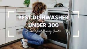best dishwasher under 300
