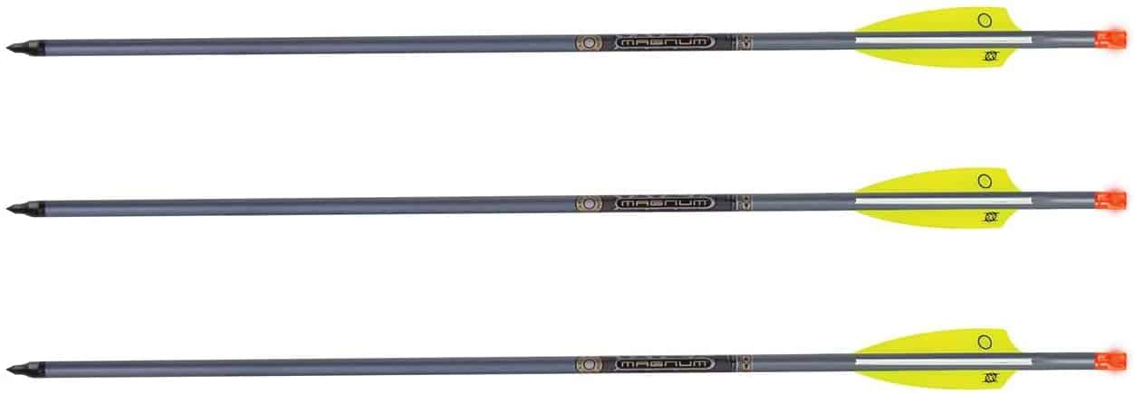 best 20 inch crossbow bolts