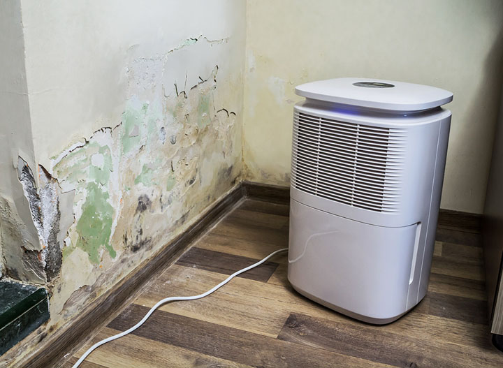 where to place an air purifier